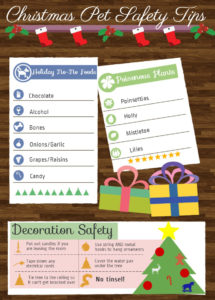 christmas-pet-safety-4