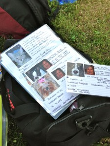 PET emergency ID cards